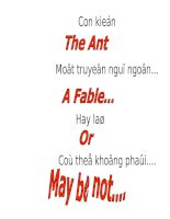 The Ant&#39_s fable.pps