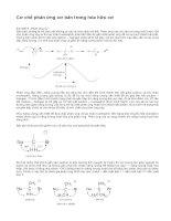 cơ chế phản ứng cơ bản trong hóa hữu cơ