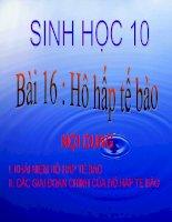 Bài 16: Hô hấp tế bào Sinh 10