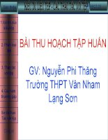bai thu hoach-Phi Thang