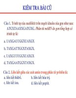 bai 3. điều hòa hoạt động của gen.ppt