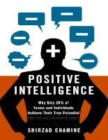 Positive intelligence why only 20  of teams and individuals achieve their true potential