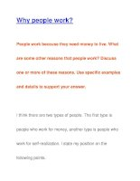 Why people work? pps