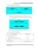 Giáo trình phân tích khả năng phát triển thiết kế theo đường cong chuyển tiếp của lực ly tâm p10 pot