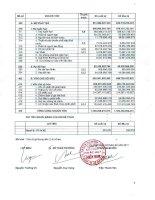 Công ty cổ phần pin ắc quy miền nam báo cáo tài chính 31 tháng 3 năm 2011
