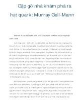 Gặp gỡ nhà khám phá ra hạt quark: Murray Gell-Mann pps