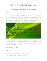 THỰC TẬP CHỌN TẠO GIỐNG Bài 3: Đánh giá tính trạng hình thái cây khoai lang potx