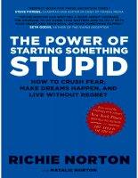 the power of starting something stupid    norton  richie