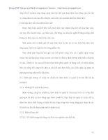 Quy trình chuẩn bị thực hiện và quản lý dự án Công nghệ thông tin về Điện lực - 8 pdf