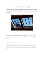 Lựa chọn ánh sáng phần mái và giải pháp pot