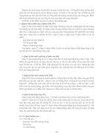 Giáo trình phân tích quá trình nghiên cứu thông số của miệng thổi chỉnh đôi p2 pdf