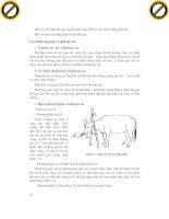 Giáo trình nghiên cứu phân tích ứng dụng chẩn đoán lâm sàn thú y p2 pdf