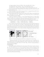 Giáo trình hướng dẫn phân tích quy trình sử dụng hệ thống truyền nhiên liệu xả trong động cơ đốt trong p9 pptx