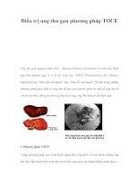 Điều trị ung thư gan phương pháp TOCE ppt