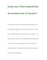 Essay topic: What responsibilitydo societies have for the poor? docx