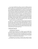Thiết kế bài giảng địa lý 8 tập 2 part 9 potx
