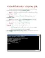 Thủ thuật Windows XP: Ghép nhiều file nhạc bằng dòng lệnh potx