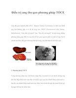 Điều trị ung thư gan phương pháp TOCE docx