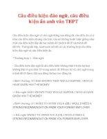 Câu điều kiện đảo ngữ, câu điều kiện ẩn anh văn THPT potx