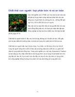 Những kiến thức tổng hợp hóa học part 8 pdf