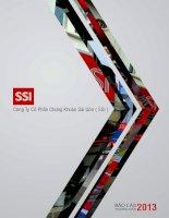 báo cáo thường niên  2013 công ty cổ phần chứng khoán sài gòn ssi