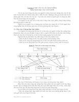 Môi trường và con người - Chương 3 pdf