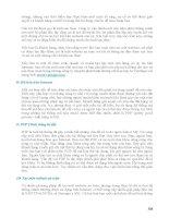 Giáo trình phân tích cấu tạo nghiệp vụ ngân hàng và thanh toán trực tuyến trên paynet p2 potx