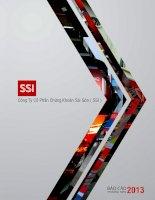 Công ty cổ phần chứng khoán sài gòn SSI báo cáo THƯỜNG NIÊN 2013