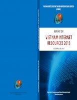 VIETNAM INTERNET NETWORK INFORMATION CENTER REPORT ON VIETNAM INTERNET RESOURCES 2013