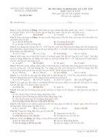 ĐỀ THI TRẮC NGHIỆM HỌC KỲ I (ÔN TẬP) MÔN VẬT LÝ 12 NC - Mã đề thi 003 docx