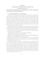 Tài liệu BÊ TÔNG CƯỜNG ĐỘ CAO VÀ CHẤT LƯỢNG CAO - Chương 1 pptx