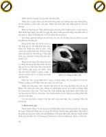 Giáo trình hướng dẫn tìm hiểu về cấu tạo cơ quan tiêu hóa ở động vật nhai lại phần 8 docx