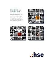 Báo cáo thường niên 2011 đặc điểm của sự xuất sắc CÔNG TY cổ PHẦN CHỨNG KHOÁN THÀNH PHỐ hồ CHÍ MINH hsc