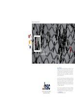 Báo cáo thường niên 2010 kết nối các đối tác CÔNG TY cổ PHẦN CHỨNG KHOÁN THÀNH PHỐ hồ CHÍ MINH hsc