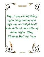 Thực trạng của hệ thống ngân hàng thương mại hiện nay và Giải pháp để hoàn thiện và phát triển hệ thống Ngân Hàng Thương Mại Việt Nam ppt