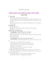 Phát triển ngôn ngữ Đề tài: BÁC GẤU ĐEN VÀ HAI CHÚ THỎ pdf