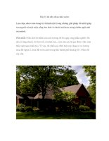 Bảy lý do nên chọn nhà vườn docx