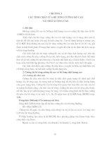 Tài liệu BÊ TÔNG CƯỜNG ĐỘ CAO VÀ CHẤT LƯỢNG CAO - Chương 3 docx