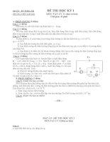 Sở GD – ĐT ĐẮKLĂK TRƯỜNG THPT EAH'LEO ĐỀ THI HỌC KỲ I MÔN: VẬT LÝ 11 (Ban ppsx