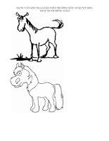 Giáo án mầm non - Nghệ thuật và động vật docx