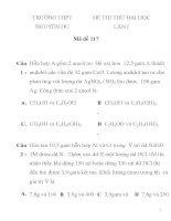 ĐỀ THI THỬ ĐẠI HỌC LẦN I Mã đề 117 TRƯỜNG THPT NGUYỄN DU pps