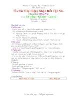 Giáo án mầm non - Đề tài: Gà trống – Gà mái – Con vịt pdf