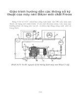 Giáo trình hướng dẫn các thông số kỹ thuật của máy nén Bitzer môi chất Freon phần 1 pps