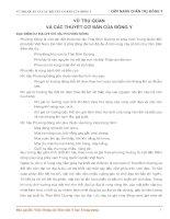 VŨ TRỤ QUAN VÀ CÁC THUYẾT CƠ BẢN CỦA ĐÔNG Y ĐẶC ĐIỂM DƯ ĐỊA CHÍ KHÍ HẬU PHƯƠNG ĐÔNG potx
