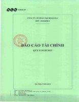 CÔNG TY cổ PHẦN tập đoàn FLC báo cáo tài chính quý 2 năm 2013