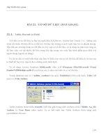 LẬP TRÌNH TRỰC QUAN - PHẦN II VISUAL BASIC - BÀI 21 pptx