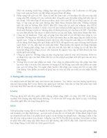 Giáo trình hướng dẫn hình thức mua bán sản phẩm bằng thẻ tín dụng trên internet phần 8 pdf