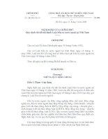 Nghị định Số : 24/2000/NĐ-CP pdf