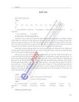 BÀI GIẢNG TIẾNG ANH CHUYÊN NGÀNH CNTT HỌC VIỆN CÔNG NGHỆ BƯU CHÍNH VIỄN THÔNG phần 8 potx