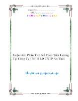 Luận văn: Phân Tích Kế Toán Tiền Lương Tại Công Ty TNHH LD CNTP An Thái pps